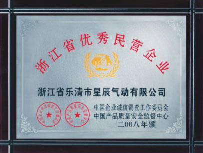 Outstanding private enterprises in Zhejiang